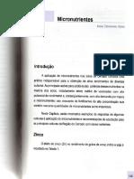 Embrapa-Cerrados_Sul-2 deficiencia zinco cerrado.pdf