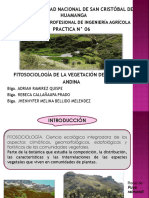 PRACT. N 06 Fitosociología