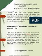 4-Desenvolvimento Do Conceito de Cultura