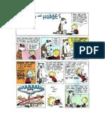 Calvin and Hobbes-1992 (Sundays)
