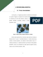 capitulo4 bibibliografia.pdf
