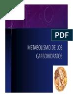 Metabolismo de Carbohidratos
