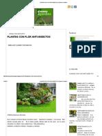 Plantas Anti-Insectos-dreams & Gardens