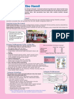 Information sheet Kelas Ibu Hamil.pdf
