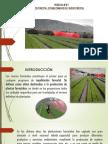 Practica 7 Vivero Forestales-2
