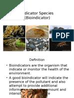 Week 4 Bioindikator