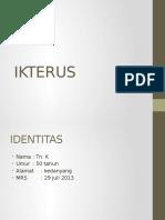 IKTERUS2