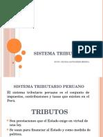 2 y 3. Sistema Tributario y Proyectos Publicos