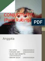 Conujugtivitis