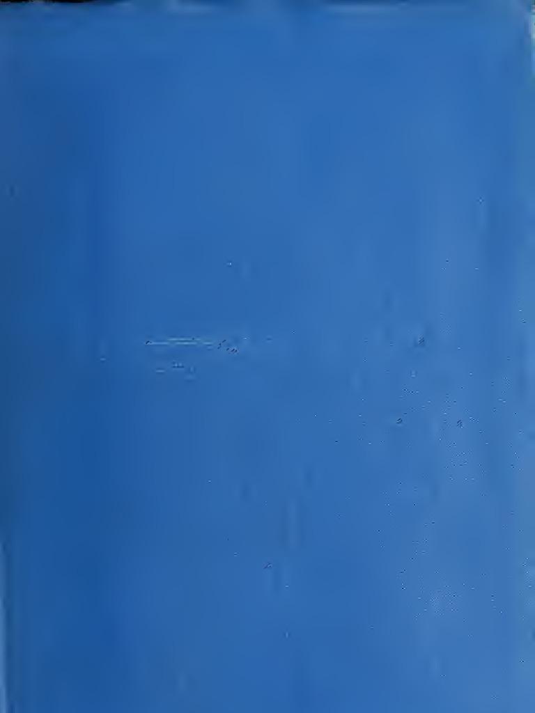 Neu Damen ofen Long Strick Weste marine blau Franzen Loch Muster Übergröße 50 58