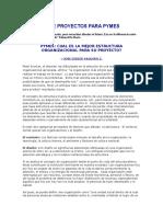 Mamm-estrutura Organizacional Para Pymes