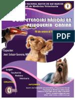 116645703-Resumen-Final-Peluqueria.pdf