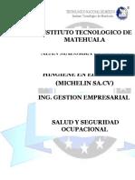 Analisis de Seguridad e Hingiene MICHELIN SA.cv