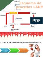 Criterios Para Realizar La Profilaxis Antibiótica