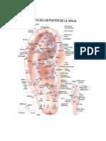 cartografia de auriculoterapia