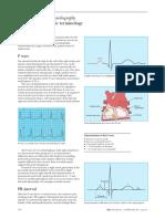 2 terminologia.pdf