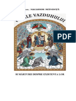 Nicodim Mandita - Vamile vazduhului si marturii despre existenta lor.pdf