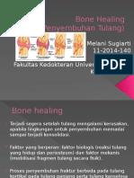 Bone Healing Ortopedi Melani Hahaha