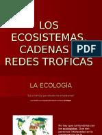 ECOSISTEMAS-1