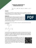 Actividad de Laboratorio 3 Nylon