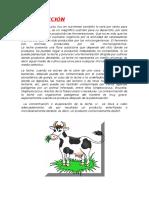 Microbiologia de La Leche y Derivados Lacteos