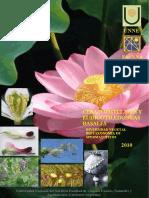 6-Ceratophyllales y Eudicotiledoneas basales.pdf