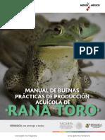 Manual Producci n de Rana Toro
