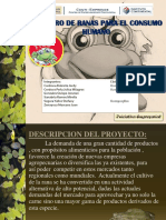 proyecto criadero de rana toro