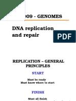 2 Replication Repair