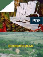 unidad 2 ecologia ciclos biogeoquimicos