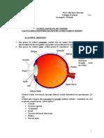 ochiul_instrumentoptic.doc