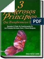 3 Principios Poderosos Para Tra - Jesus Garay