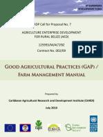 Final Gap and FM Manual