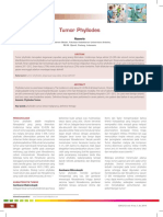 11_212Tumor Phyllodes.pdf