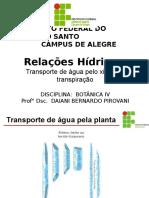Aula - Relações Hídricas-Transporte de água pelo xilema e transpiração.ppt