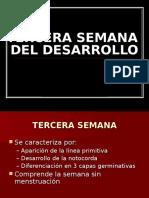 3 Sem. Desarrollo Disco Germinativo Trilaminar