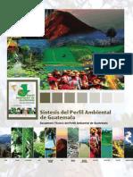Síntesis Del Perfil Ambiental de Guatemala