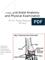 Foot and Ankle Anatomy and Physical Examination PART 1