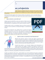 lungs-and-exercise-es.pdf