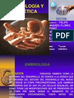 embriokogia