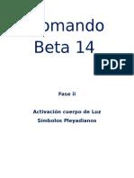 Comando Beta 14 2.docx