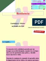 1. Lic. Bermejo - La Resiliencia.ppt