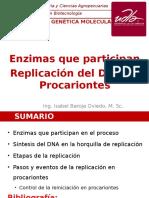 5.1 Replicación Procariontes IB.ppt