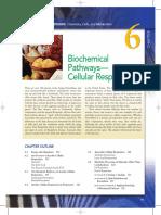 Biochemical Pathways.pdf