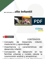 (12) PpT Desarrollo Infantil
