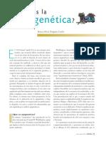 Qué Es La Epigenética