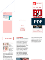 boston university brochure