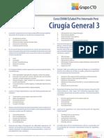 Test Cg3 Enam13