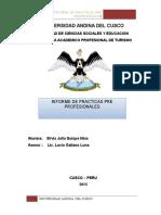 Infor Practicas Pre Profesionales 2015