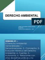 DERECHO AMBIENTAL (1).pdf
